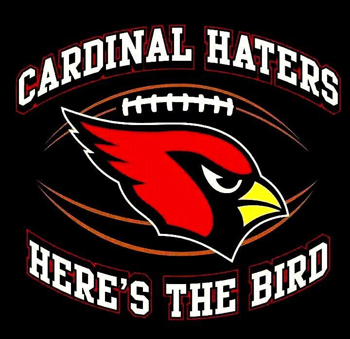 Playsarea Arizona Cardinals Nfl Playsarea